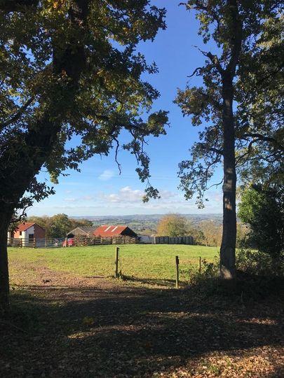 Bow Hayes Farm 14