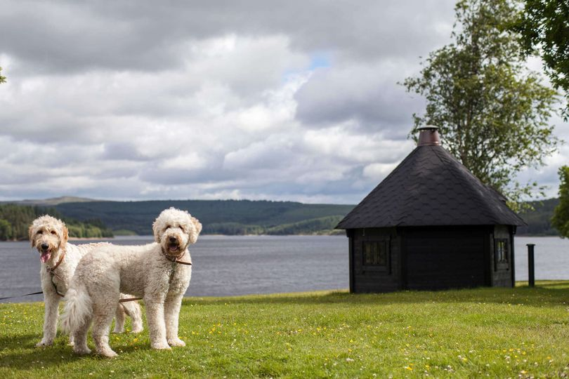 Kielder Waterside 6