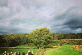 Great British Wine Tours