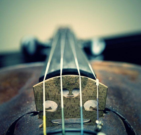 Luke's violin