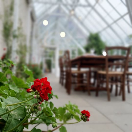 View of the Conservatory
