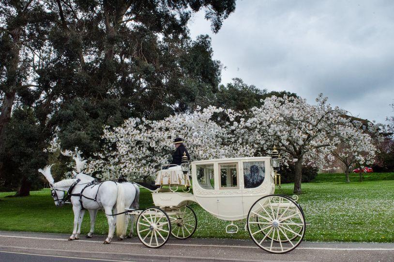 Reed Hall wedding