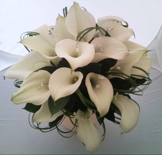 Elegant White Calla lilies