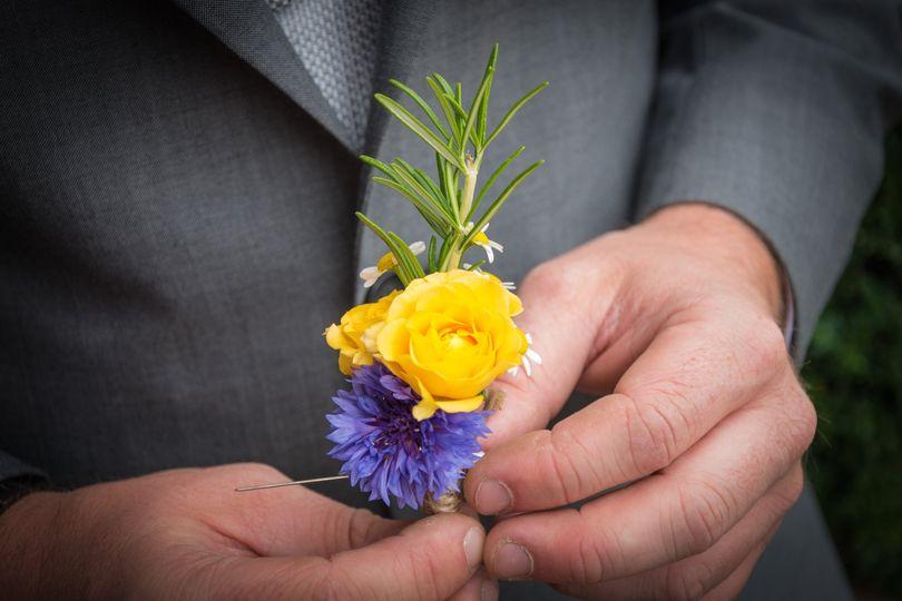 Flowers - Stephen Vaughan Photography