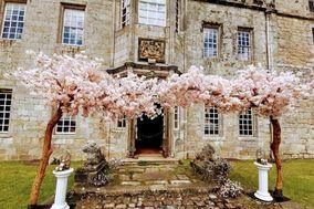 Blossom Tree Hire Co
