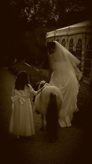 Bride, bridesmaid and pony