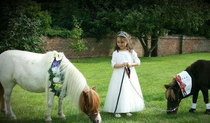 Twinkletoes Ponies 1