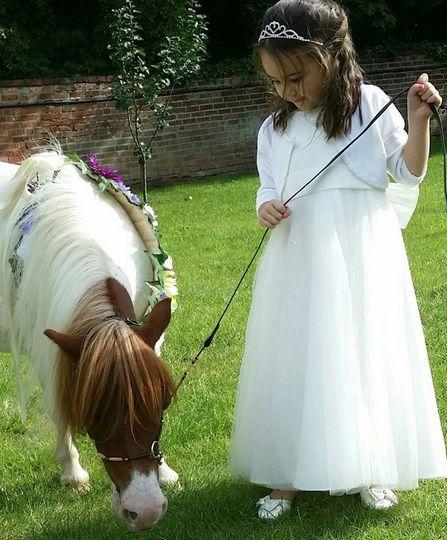 twinkletoes ponies 004 4 109918