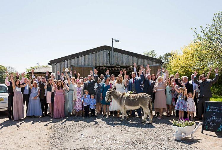 The Donkey Sanctuary 2