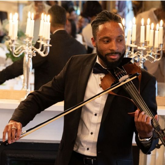 Violinist Wowing The Guests
