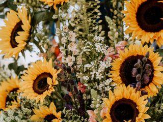Blend & Bloom 1