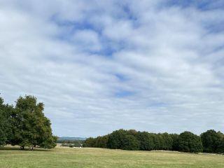 Chiddingstone Castle 3
