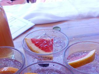 Sloe Drinks Co 1