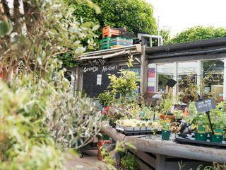 Kitchen Garden Cafe 4