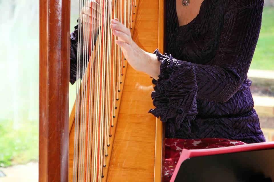 Amazing harp playing