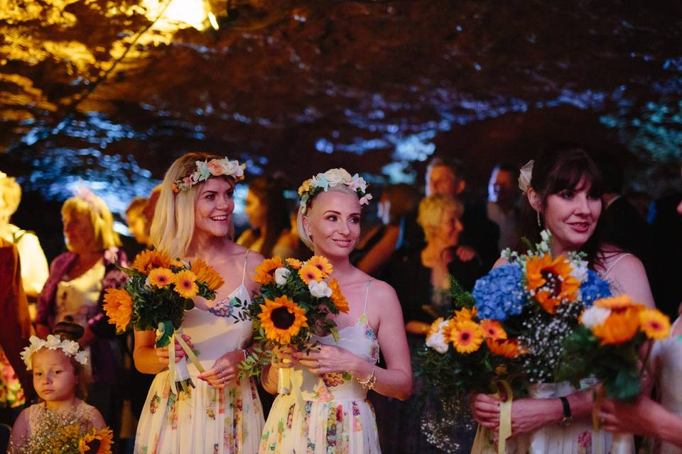 Wedding party in the Wookey Hole Caves