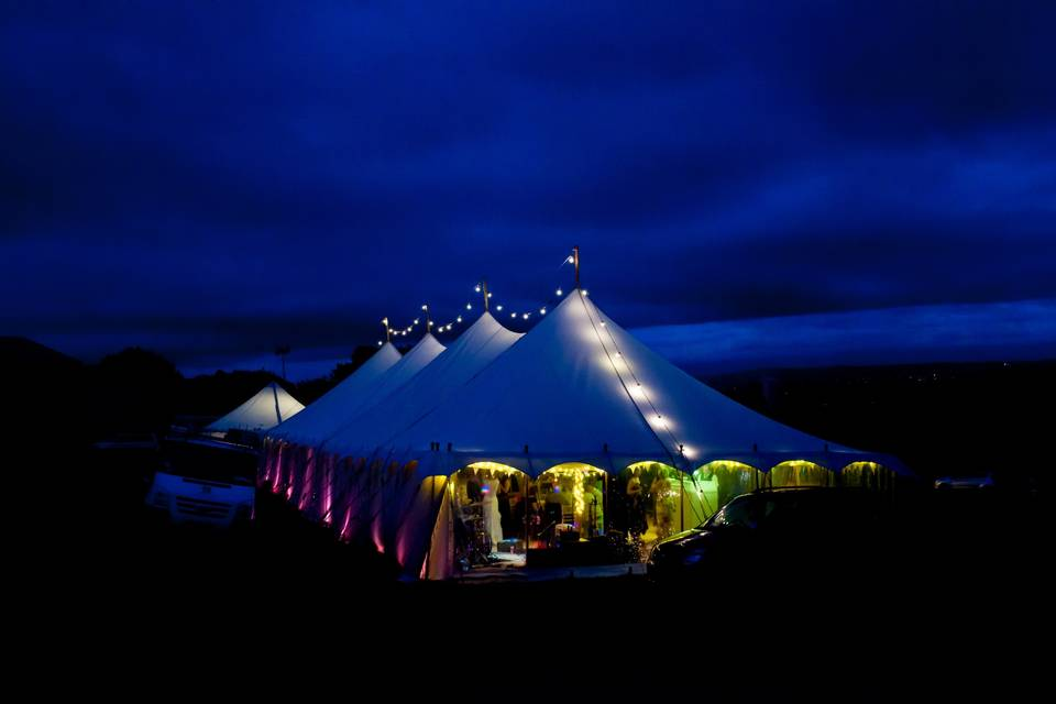Petal marquee at night
