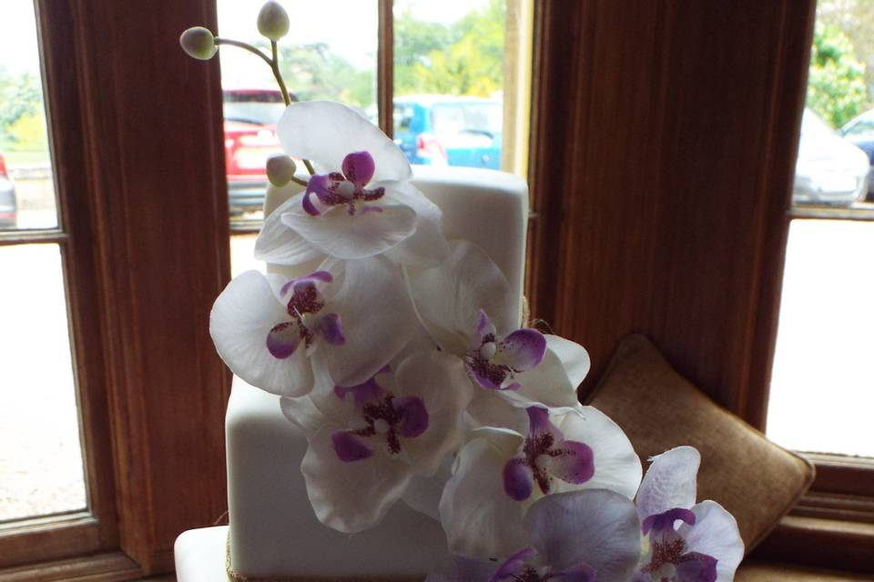 Square off-set with orchids
