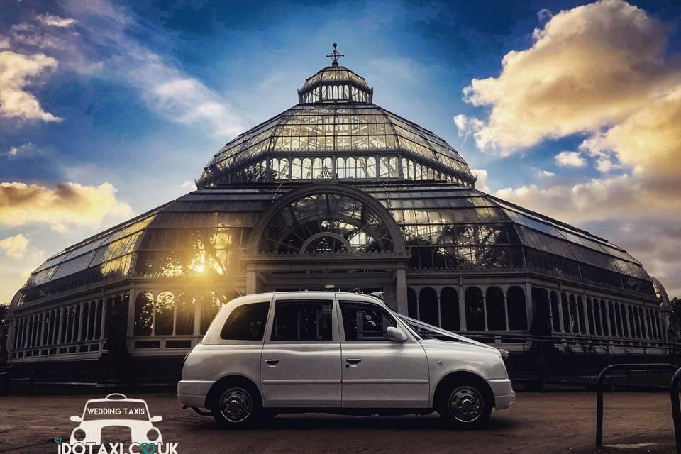 Classy wedding transport