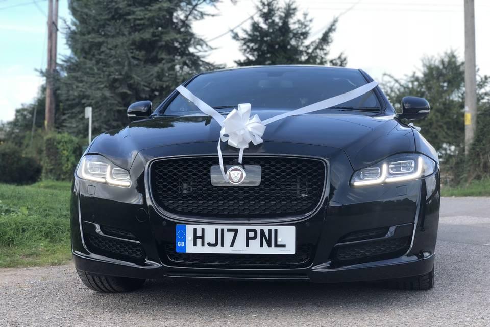 The smiling Jaguar