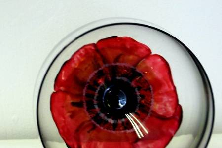 Hand painted poppy glass -