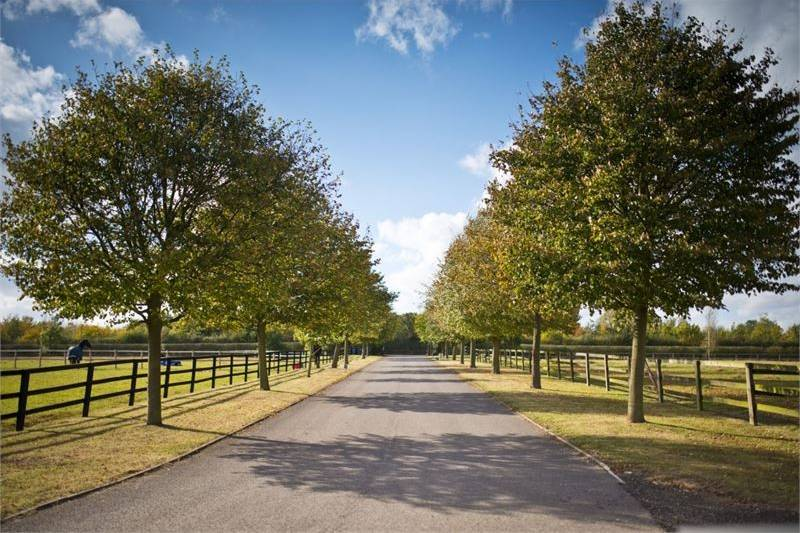 Entrance to Rosewood Stud