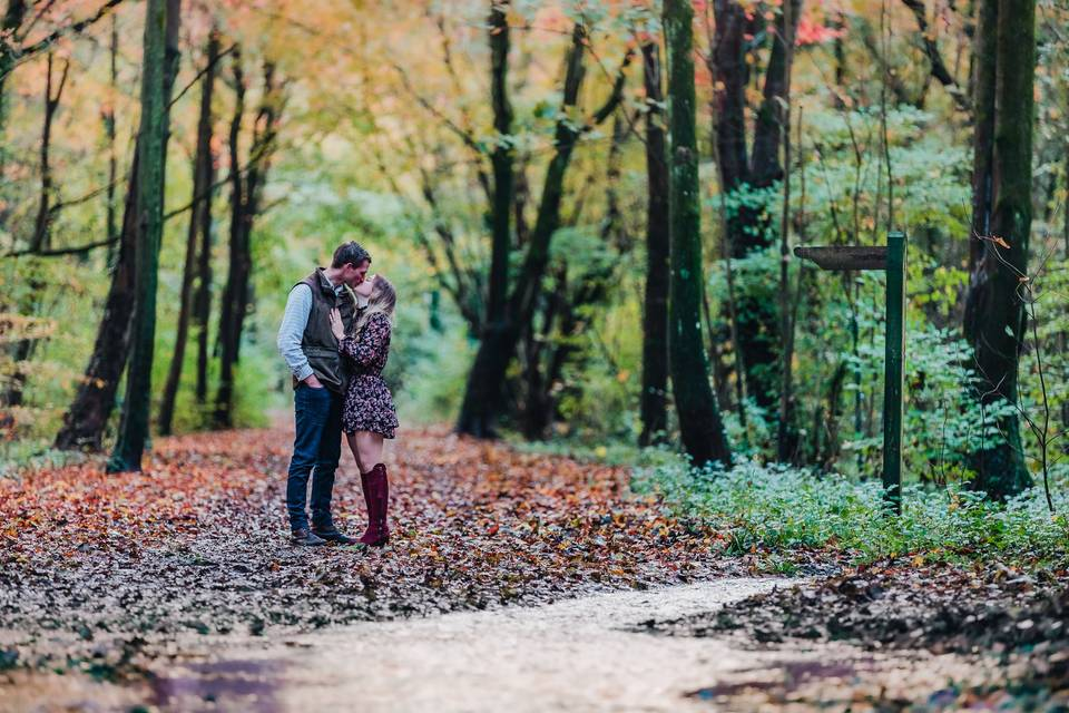Hundred acre woods engagement