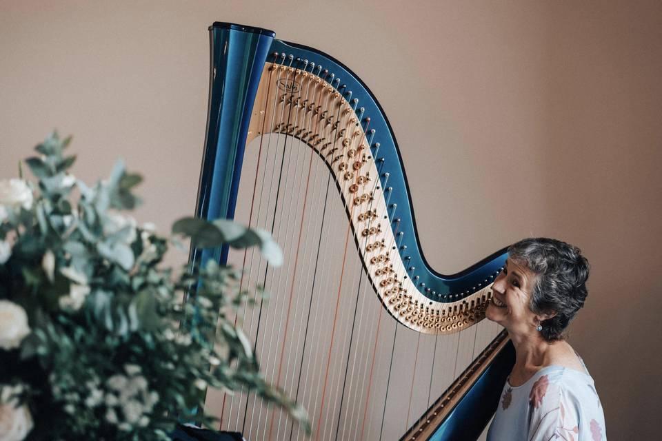 Absolute Harp