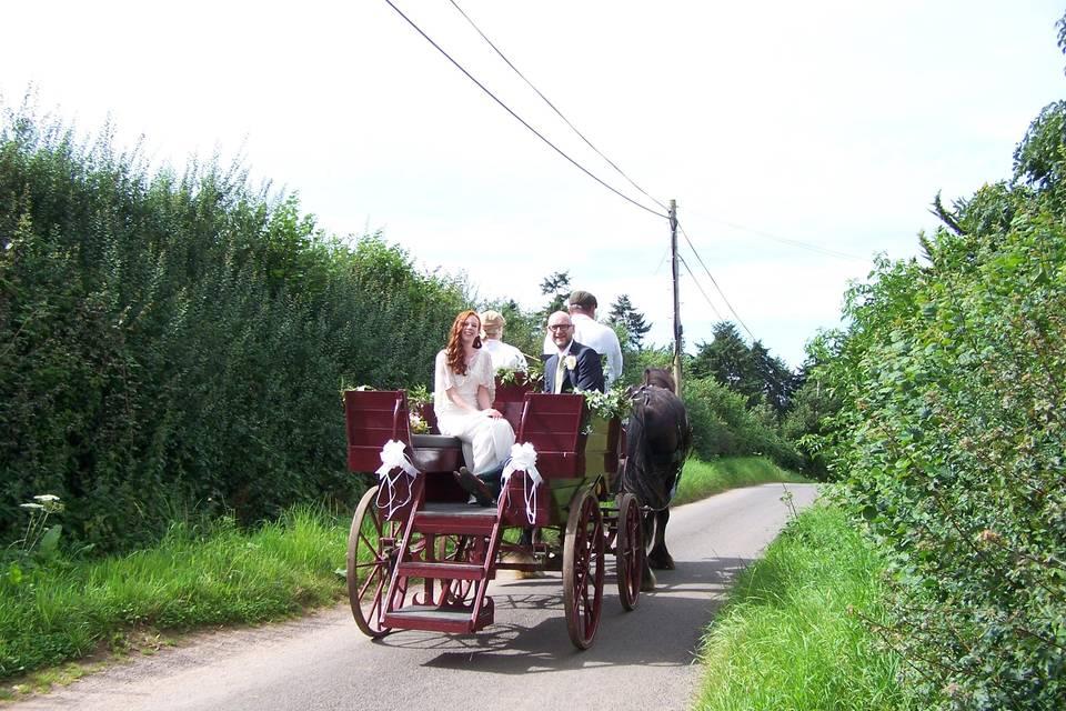 Burgundy Wagonette