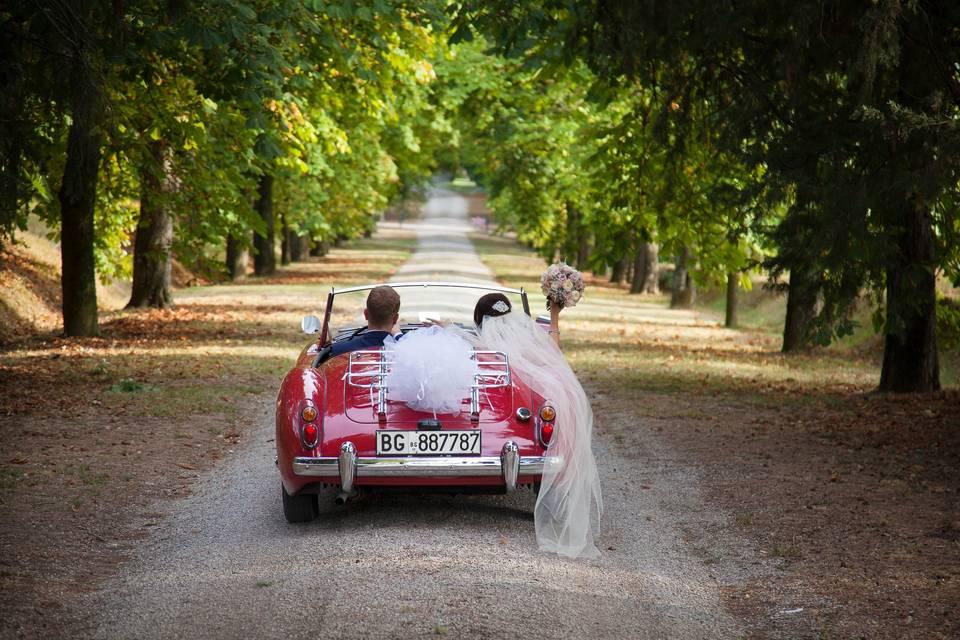 Valentina Weddings