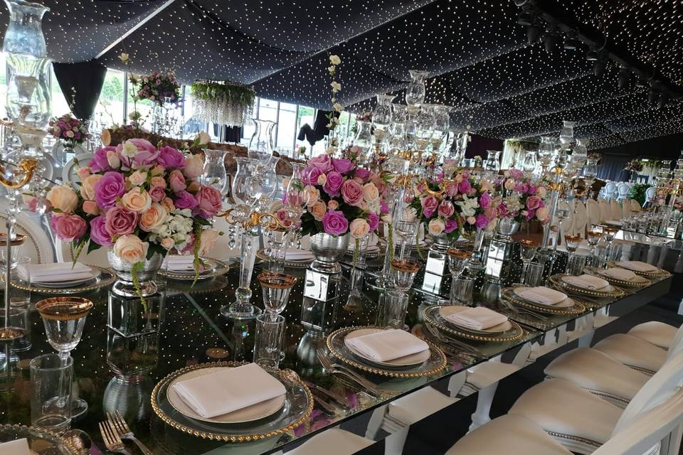 Table decor and starlight lining
