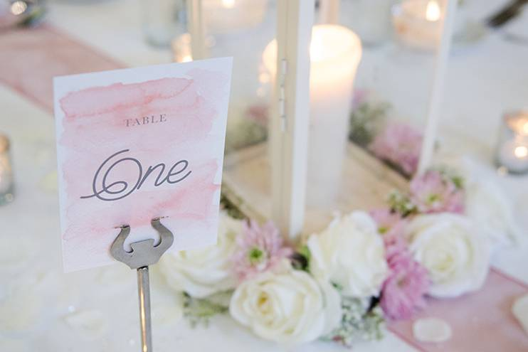 Lily Special Events - Chair Covers