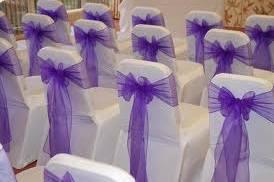 Purple on wihite