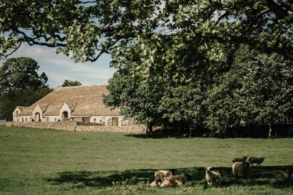 The Tithe Barn – Bolton Abbey 30