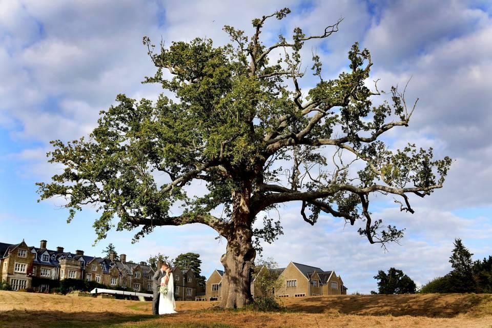 South Lodge, Sussex Wedding Venue Licensed for Civil Ceremonies