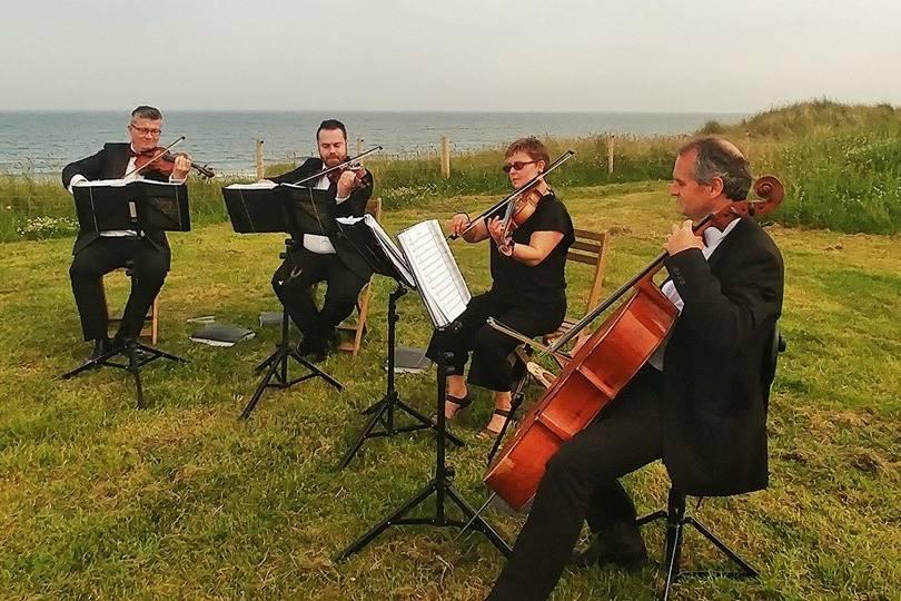 String Quartet:Barn on the Bay