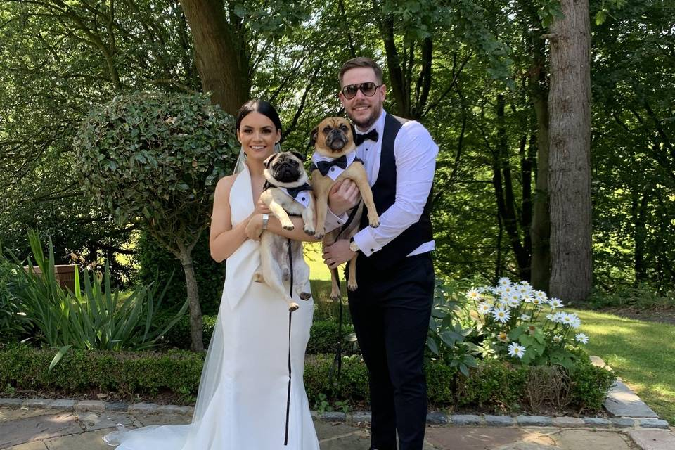 Wags & Whiskers Weddings