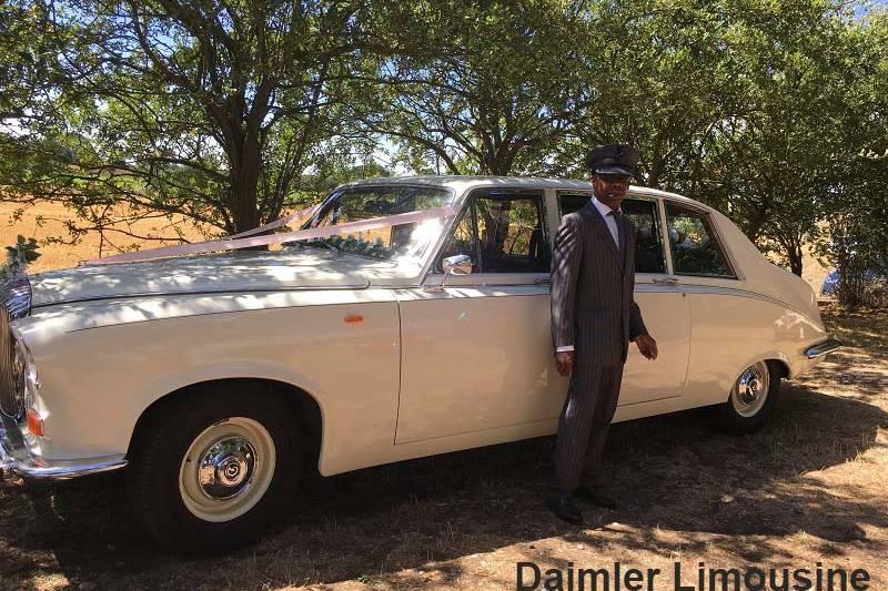 Stunning Daimler Limousine