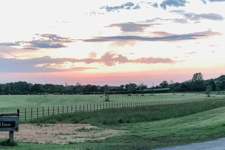 Crockwell Farm 49